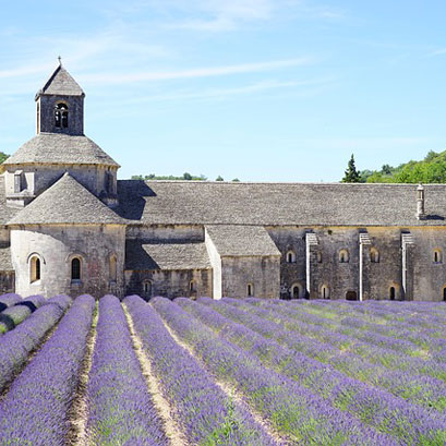 Mivoyagi-Travel-France-Provence